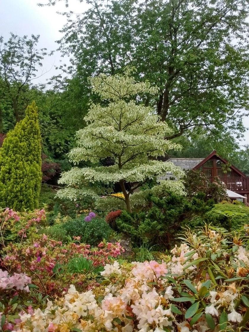 robs-lea-gardens