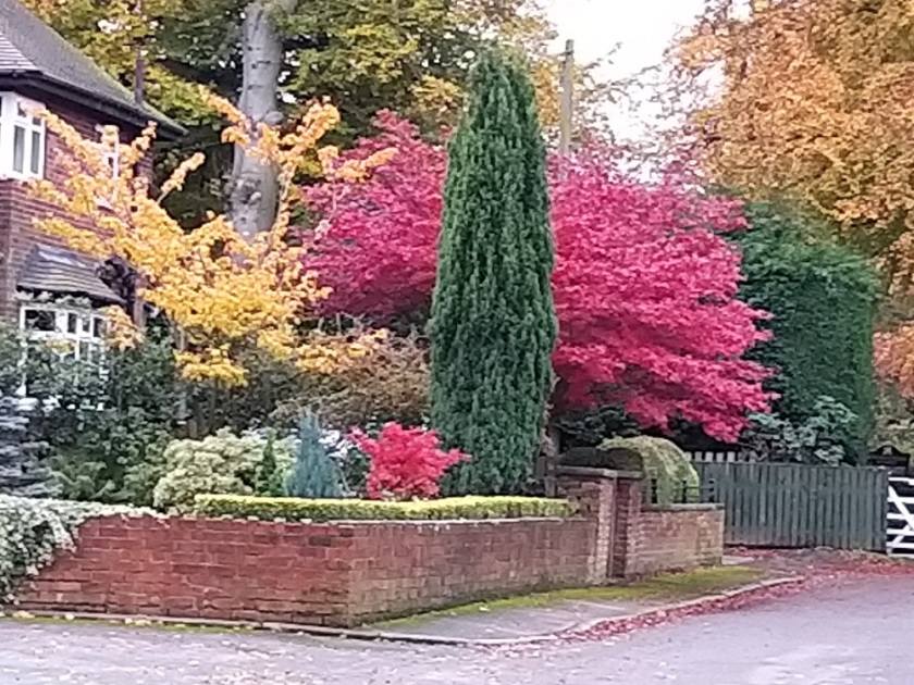 Pauline's Wathwood Drive Swinton A