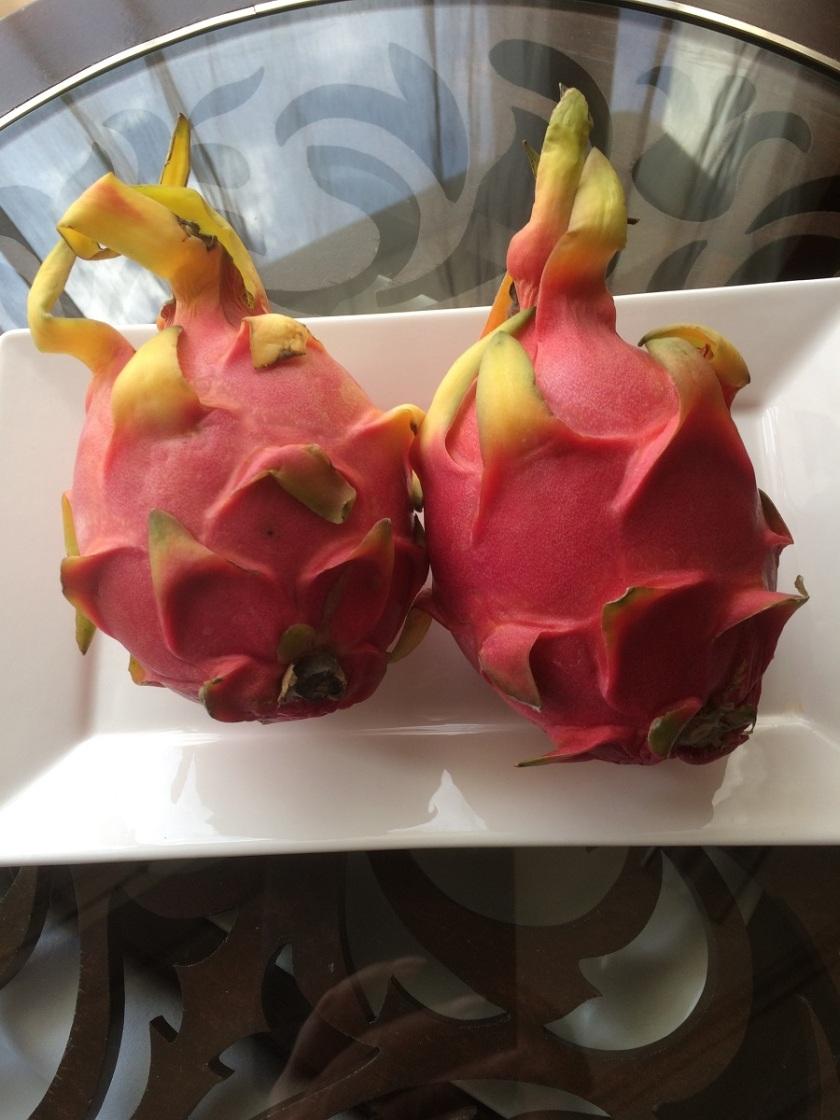 Glynis's Kuala Lumpur hotel room dragon fruit A