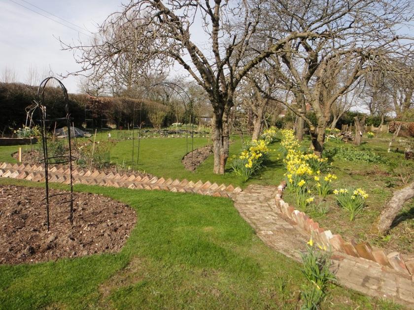 Jo's Spring Garden A