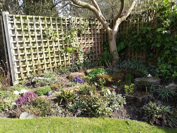 Meg's garden 3 A