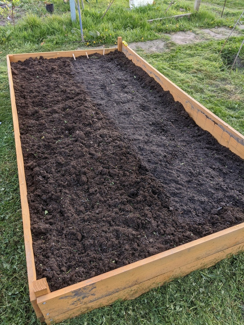 Nat's raised bed A