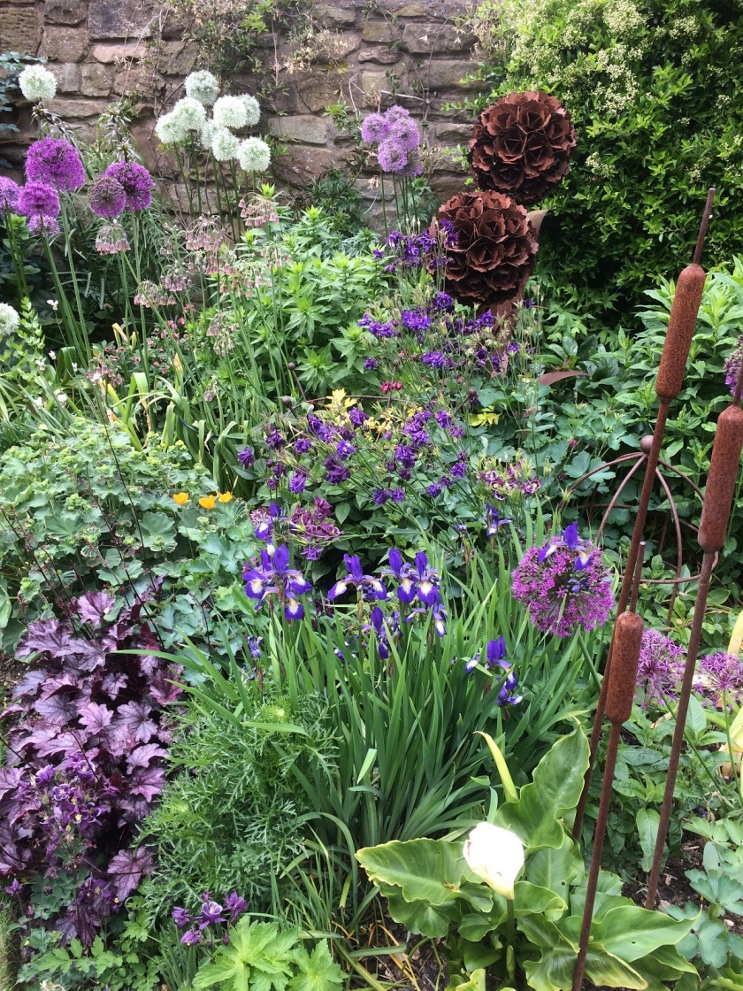 Glynis's border A