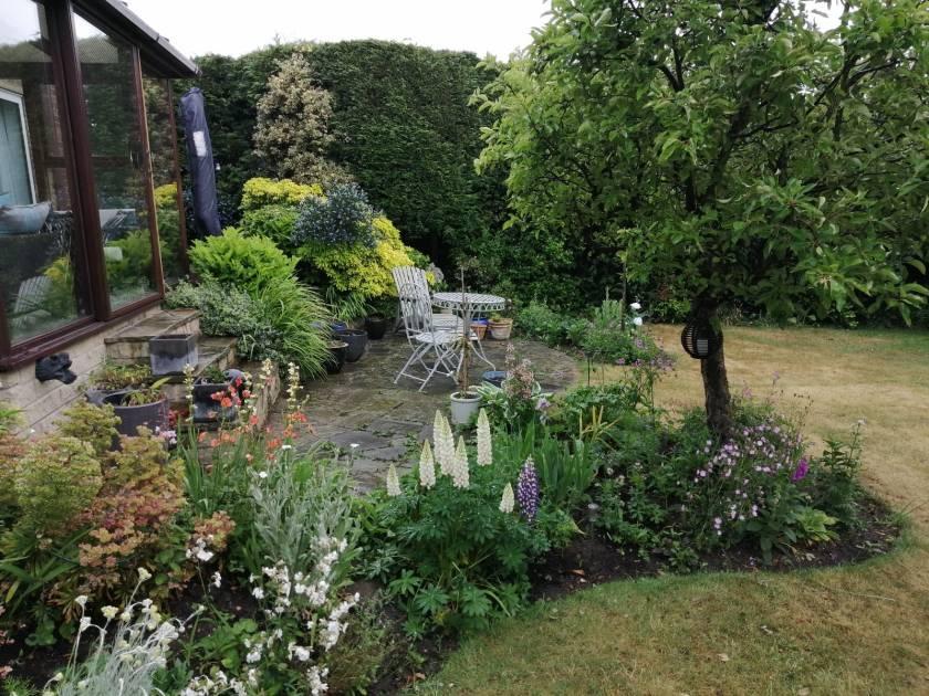 Pauline's garden 3