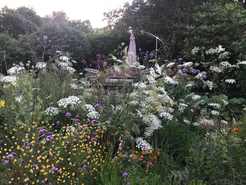 Pauline's Garden 4